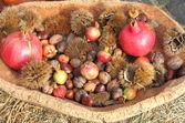 Landwirtschaftliche erzeugnisse des herbstes — Stockfoto