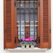 Romantic window — Stock Photo #13553753