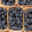 Stock Photo: Fresh ripe blackberries