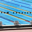 Stock Photo: Olympic swimming pool