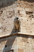 Gargoyle in Palma de Mallorca cathedral — Stock Photo