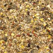 Stock Photo: Horse feed mix