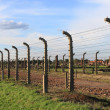 Auschwitz Birkenau concentration camp — Stock Photo #19513119