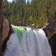 lower yellowstone falls — Stock Photo