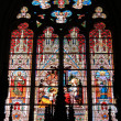 Stained glass window — Stock Photo #20944521