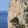 Vertical cliff on the sea — Stock Photo