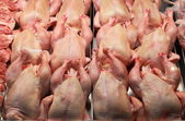 Fresh chickens in a butcher shop — Stock Photo