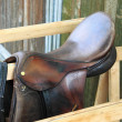 Stock Photo: Saddle horse