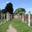 Stock Photo: Columns of an ancient roman temple