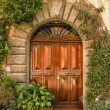 Renaissance front door - Vintage — Stock Photo
