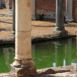 Ancient columns in Villa Adriana — Stock Photo