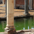Ancient columns in Villa Adriana — Stock Photo #24258467