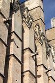 Gargoyles in Palma de Mallorca cathedral — Stock Photo