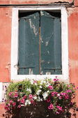 Old window with flower pots — Stock Photo