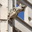 Stock Photo: Gargoyle at La Lonja monument