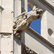 Gargoyle at La Lonja monument — Stock Photo
