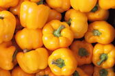 Yellow peppers — Stock Photo