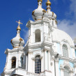 Domes of Smolny Cathedral — Stock Photo