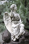 Cherub angel — Stock Photo