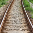 Railway line — Stock Photo #6379719
