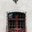Medieval window with flowers — Stock Photo #6379726