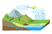 Vector schema of the water cycle in nature — Stock Vector