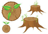 Tree stump and green plant shoot, vector — Stock Vector