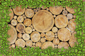 Stacked Logs Background with ying yang — Stock Photo