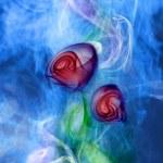 Flower smoke — Stock Photo
