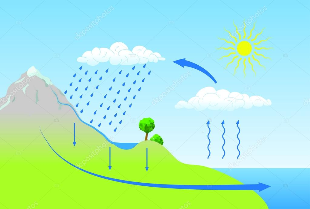 Ciclos Del Agua en la Naturaleza Del Ciclo Del Agua en la