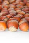 Hazelnuts on white surface — Stock Photo