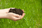 Hands with soil — Stock Photo