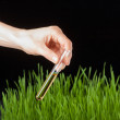 Hand with a test tube and grass. Fertilizer — Stock Photo #40576955