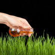 Hand with a test tube and grass. Fertilizer — Stock Photo #40576961