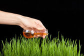 Hand with a test tube and grass. Fertilizer — Stock Photo