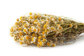Dried chamomile on white background — Stock Photo