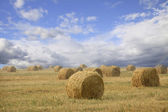 Straw bales on farmland with cloudy sky — Stock Photo