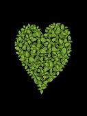 List ve tvaru srdce na černém pozadí — Stock fotografie