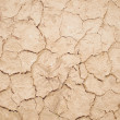 Dry cracked earth — Stock Photo #44030009