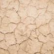 Dry cracked earth — Stock Photo