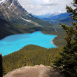 Peyto Lake in Banff National Park, Canada — Stock Photo #45787679