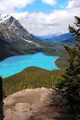 Peyto Lake in Banff National Park, Canada — Stock Photo