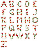 Floral alphabet in white background — Stock Photo