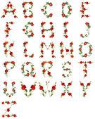 Alphabet floral en fond blanc — Photo