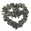 Sunflower seeds pile isolated at white background — Stock Photo