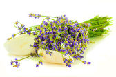 A bunch of lavender flowers on a white background with massage stones — Stock Photo