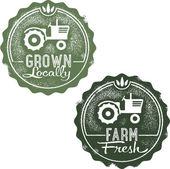 Frsh de la granja y producidos localmente — Vector de stock