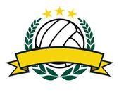 Banner y corona de voleibol — Vector de stock