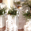 Christmas decoration — Stock Photo #31002867