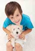 Young boy with his doggy — Stock Photo